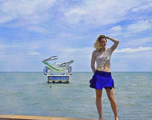 Road trip au Cambodge : Kep & son marché au crabe bleu
