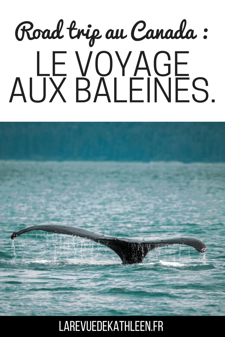 Road trip au Canada : Le voyage aux baleines - La revue de kathleen - Blog Lifestyle