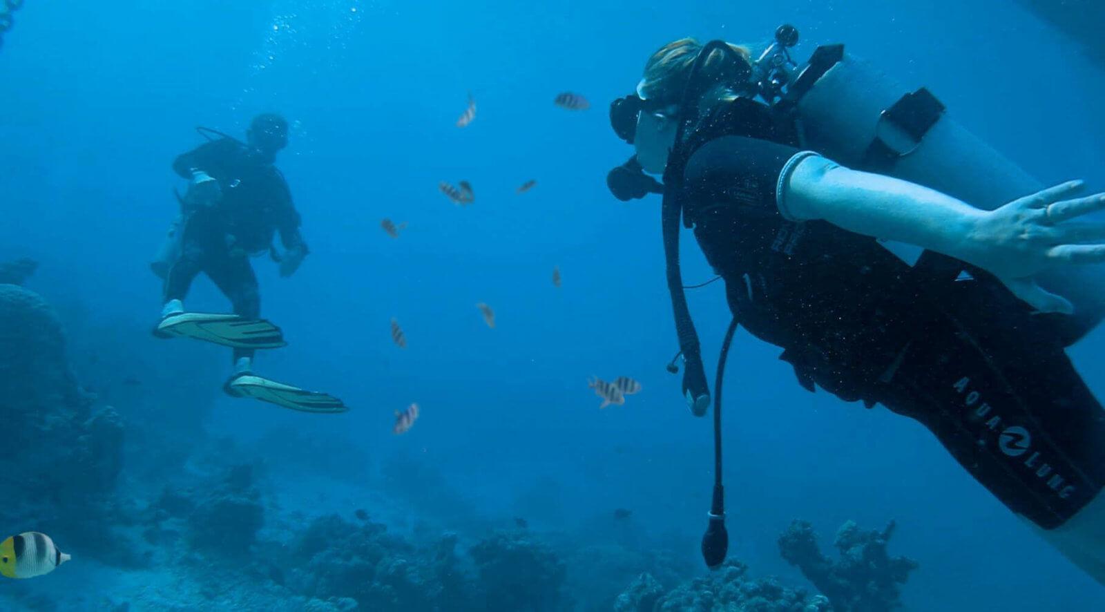 Centre de plongée -Tahiti - Moorea - Polynésie française - TOP DIVE - La revue de Kathleen - Blog Lifestyle et voyage à Paris