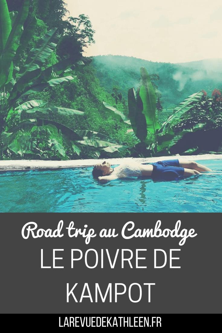 Road trip au Cambodge : Le poivre de Kampot par la revue de kathleen blog lifestyle