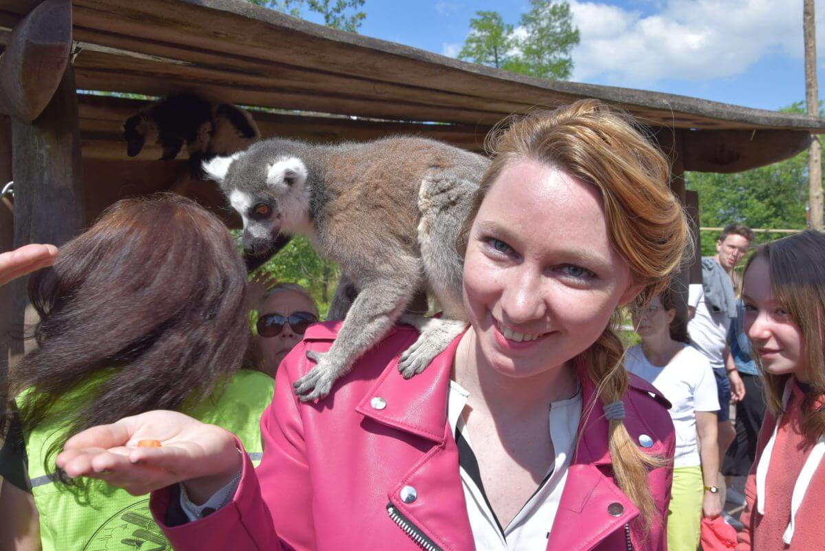 Pairi Daiza : La folie des singes et des lémuriens !- La revue de Kathleen - Blog Lifestyle et voyage à Paris