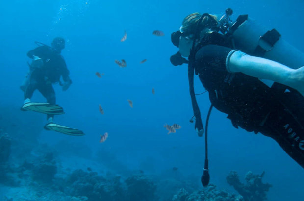 La plongée sous-Marine à Tahiti – Topdive