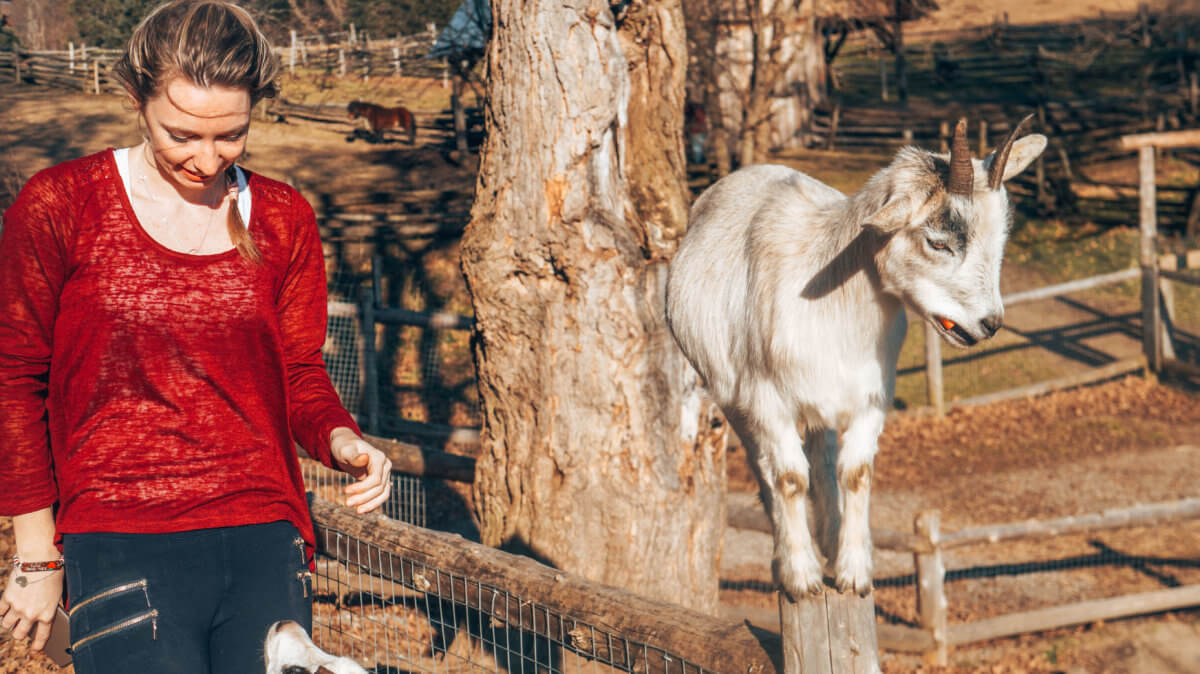 Parc Oméga-Canada-La revue de Kathleen-Blog-Lifestyle-voyage-Paris