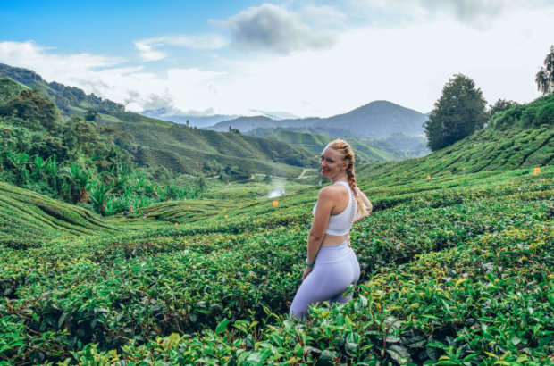 Visiter Cameron Highland en Malaisie