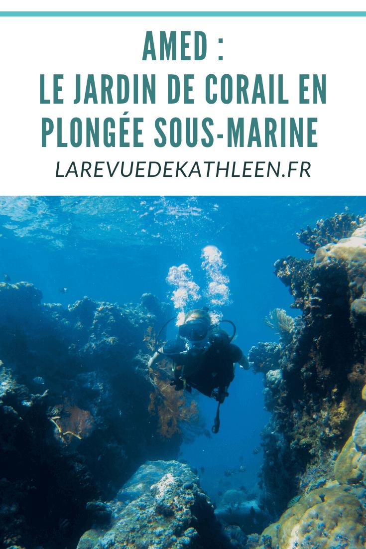 Jardin-corail-poissons-fantomes-Amed-Bali-Indonesie-La revue de Kathleen-Blog-Lifestyle-voyage-Paris