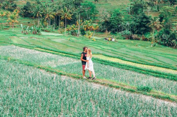 Le temple Ulun Danu Bratan et les rizières de Jatiluwih à Bali