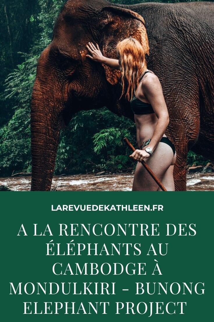 elephant-Mondulkiri-Cambodge-Bunong-project-La revue de Kathleen-Blog-Lifestyle-voyage-Paris
