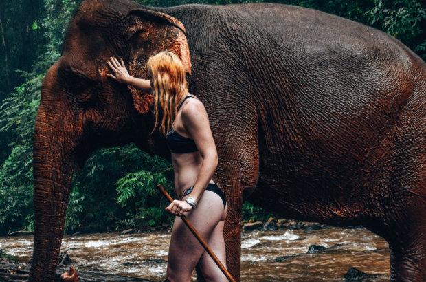A la rencontre des éléphants au Cambodge, Mondul Kiri – Bunong elephant project